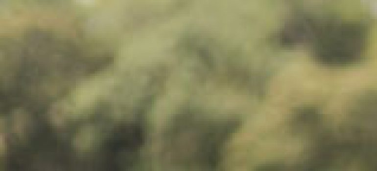 etam-slide01