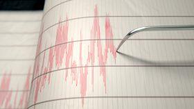 Sobreviviendo a un sismo