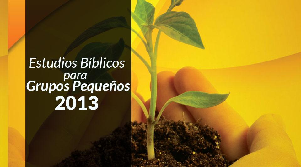 Estudios Grupo Pequeño 2013