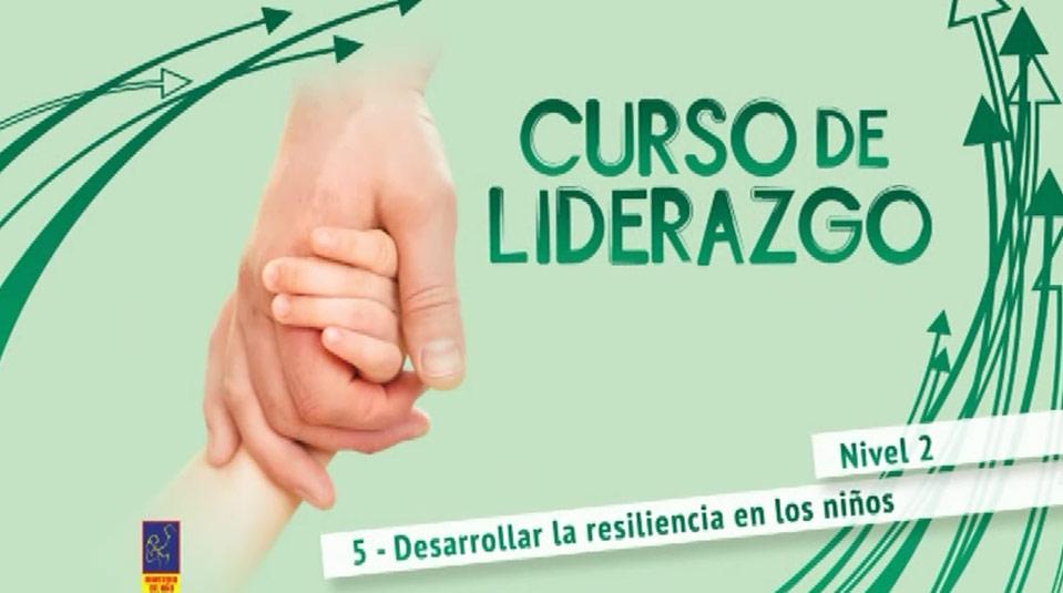 curso-liderazgo5