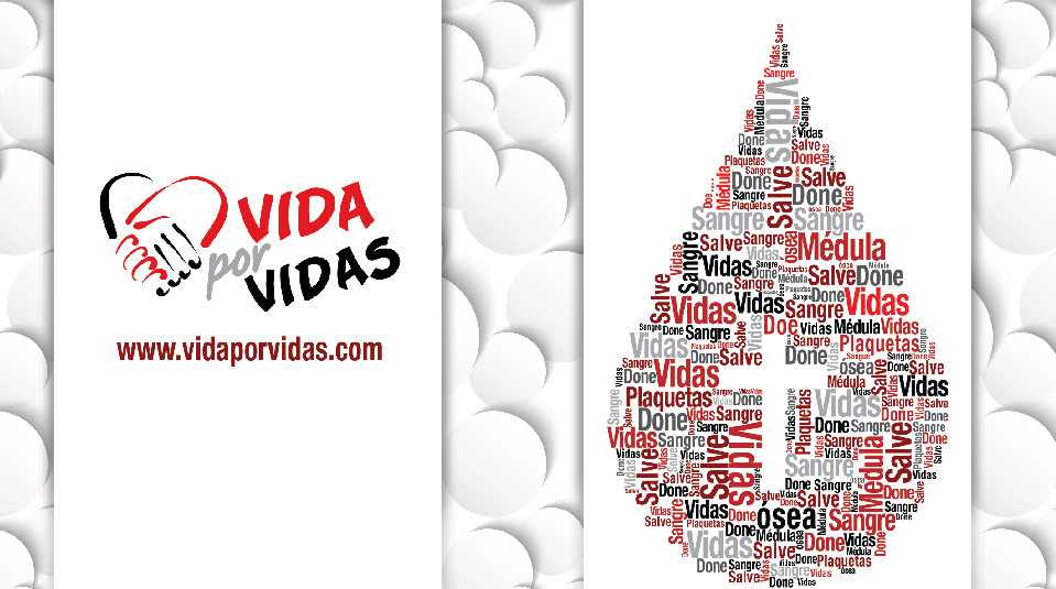 Folleto: vida por vidas 2014
