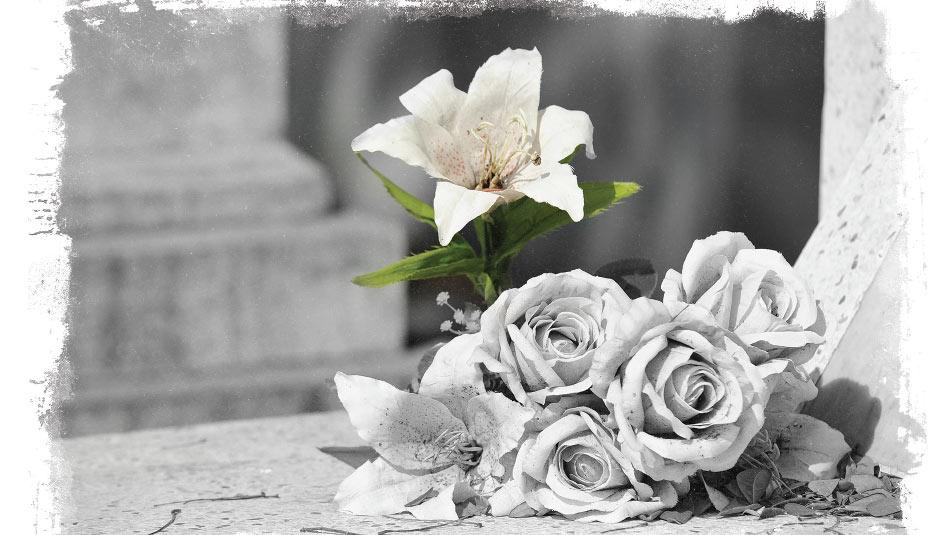 Tarjeta: Día de los Muertos