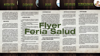 Flyer: Feria de Salud