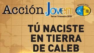 Revista Acción Joven – 3º/Tri/2015