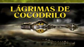 PowerPoint 10 Lágrimas de cocodrilo