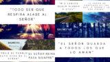 40 Imágenes para meditar en Salmos | Primero Dios