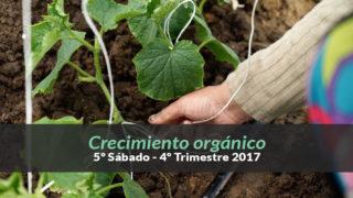 4ºTrim17/ 5º Sab.) Informativo Mundial de las Misiones – Crecimiento orgánico