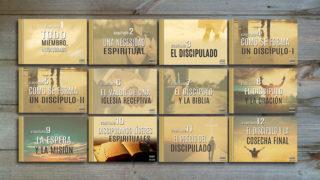 """12 Tema en PPT: Libro """"Todo Miembro Involucrado"""" – 2018"""