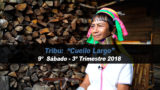 9º Sábado (3º Trim18) – Tribu Cuello Largo