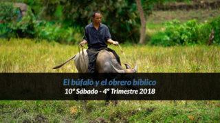 10º Sábado (4º Trim18) – El Búfalo y el obrero bíblico