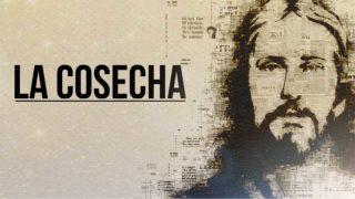 Video: La Cosecha | Concilio de Colportaje 2019