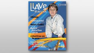 13 LLAVE M PRIMARIOS 2008 A 1 TRIM