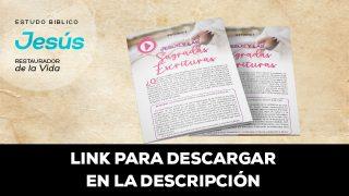 Estudios Individuales – Estudio Bíblico Mujer: Jesús Restaurador de la Vida