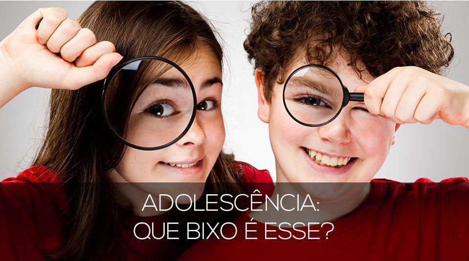 Livro – Adolescência: que bicho é esse?
