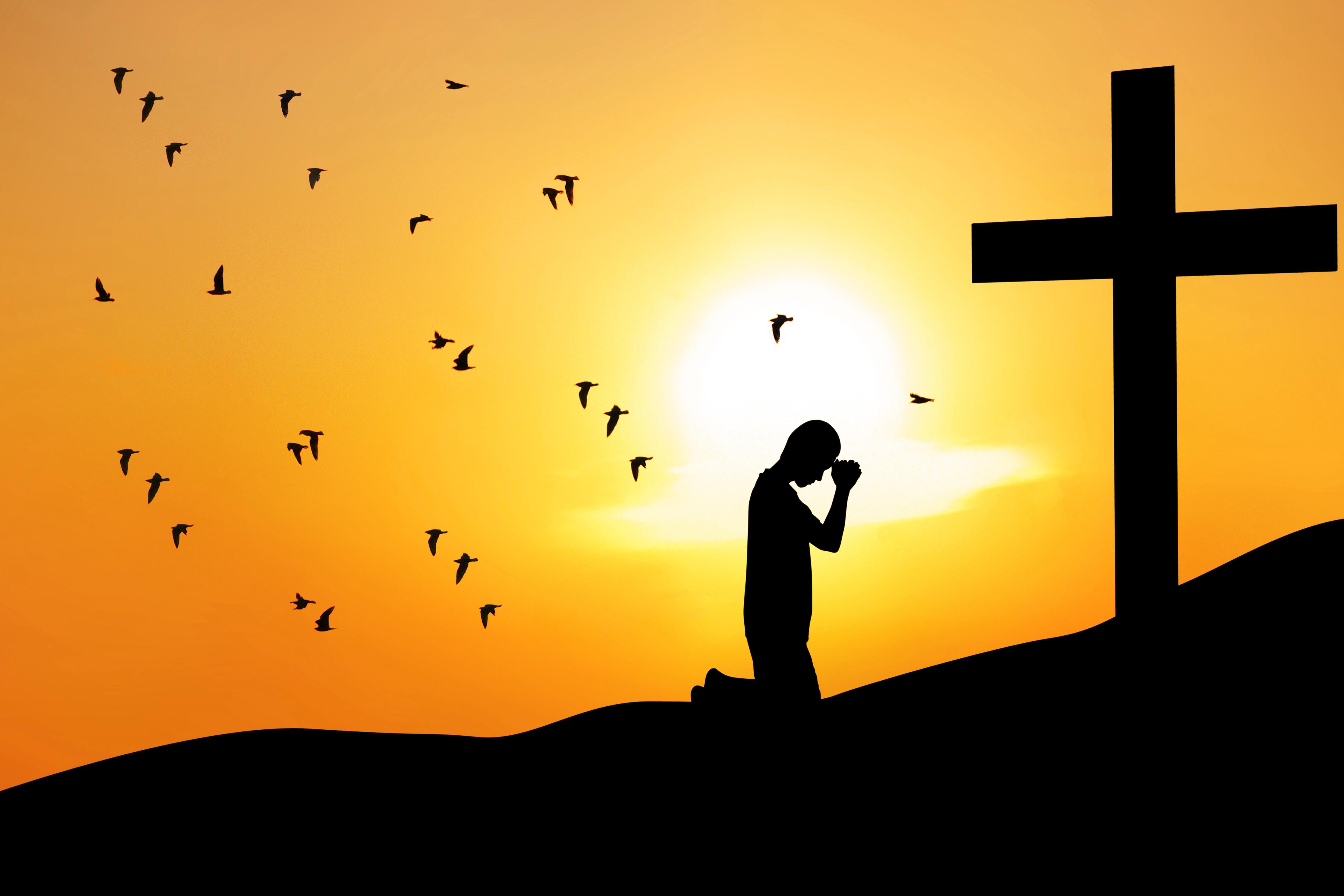 Sermão: José, Vencedor num Lar Derrotado