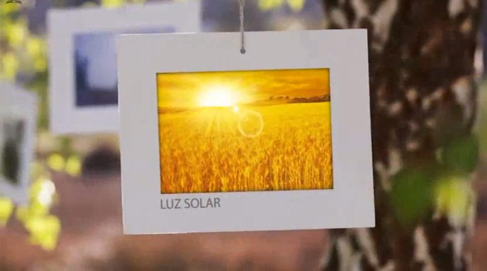 Saúde com Estilo – Luz Solar
