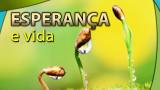 #5 PPT: Esperança e vida – Evangelismo Público de Colheita 2014