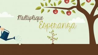 Arte para fundo de apresentações:  Multiplicando Esperança 2015