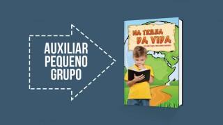 Auxiliar professor: Pequeno Grupo Infantil 2016