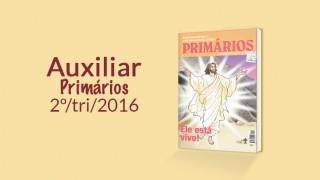 Auxiliar: Primários 2º trimestre 2016