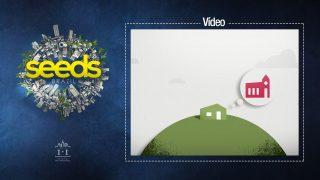(Vídeo) Métodos de plantar