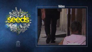 (Vídeo) Clip da ADRA