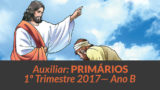 Auxiliar: Primários – 1º trimestre 2017