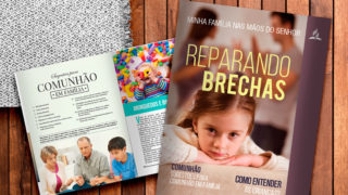 REPARANDO BRECHAS