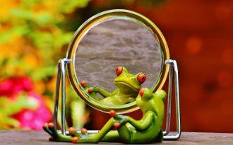 sapo olhando no espelho - autoestima