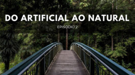 Do artificial ao natural