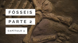 Fósseis – Parte 2