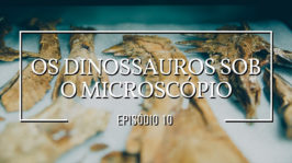 Os dinossauros sob o microscópio