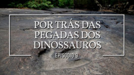 Por trás das pegadas dos dinossauros