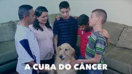 A cura do Câncer
