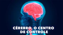 Cérebro, o Centro de Controle