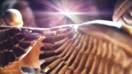 Los ángeles también cantan