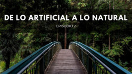 De lo artificial a lo natural