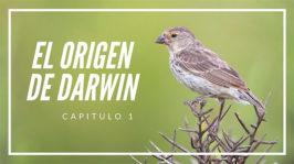 El origen de Darwin