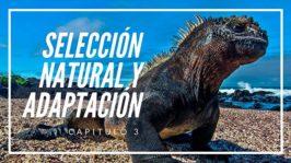 Selección Natural y Adaptación