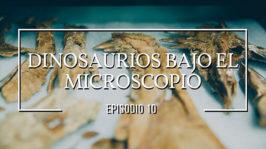 Dinosaurios bajo el microscopio