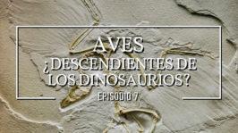 Aves – ¿Descendientes de dinosaurios?