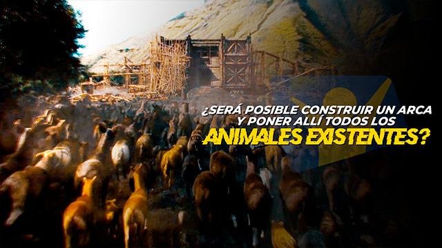 T1 El arca de Noé