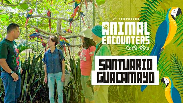 Santuario Guacamayo