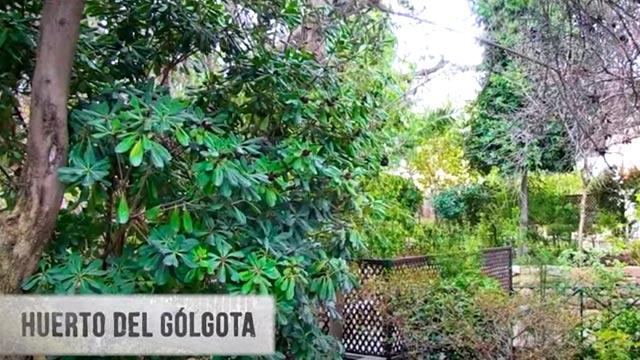 huerto del Gólgota