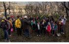 Niños inician reforestación en bosques patagónicos