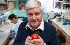 Investigador está desarrollando vacunas comestibles a base de plantas y frutas