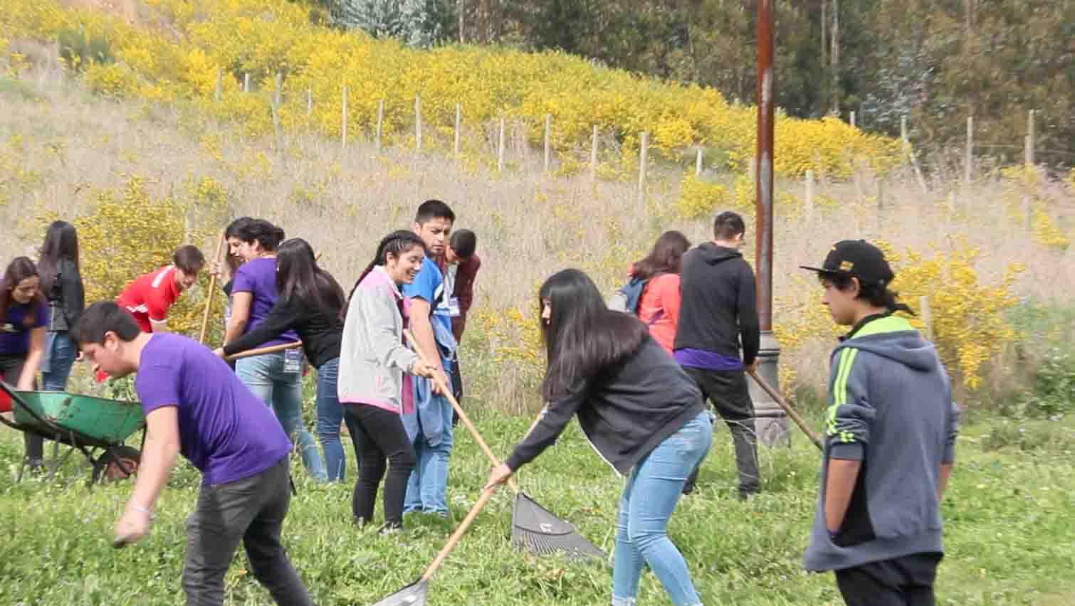 Los desafíos virtuales animan a los jóvenes a marcar la diferencia en la comunidad  Noticias