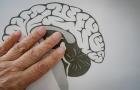 Cómo luchar contra el deterioro cognitivo y el Alzheimer