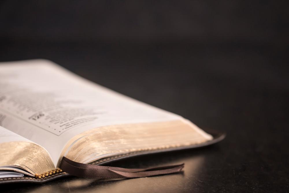 El Concilio Mundial de la Iglesia se lleva a cabo de una manera sin precedentes  Noticias