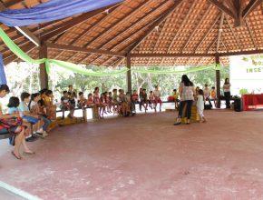 Crianças eram desafiadas a encontrar, em meio à natureza, os insetos apresentados nas lições.